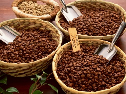 kofejnye-tury-dlya-lyubitelej-kofe